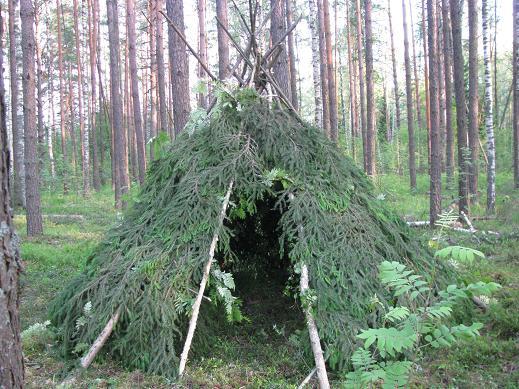 Убежище в лесу видео